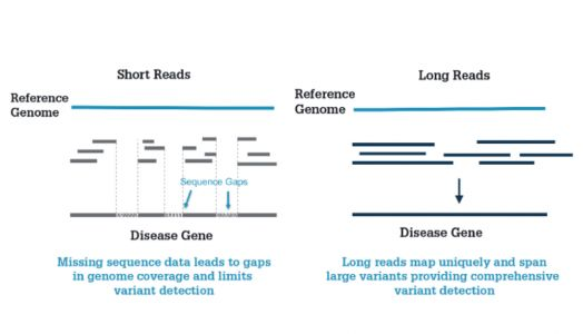 The Pathologist: Solving Rare Disease with SMRT Sequencing