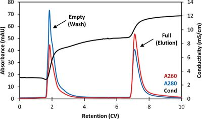 Separating Empty and Full Recombinant Adeno‐Associated Virus Particles Using Isocratic Anion Exchange Chromatography