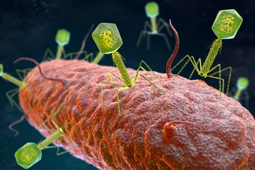 Phage Therapy Firm APT Lands DoD Contract for Antibiotic Alternative