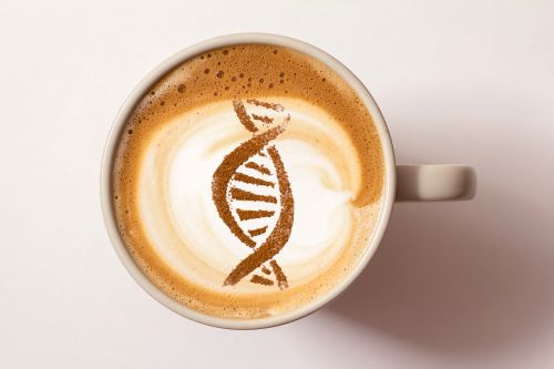 The Complex Biology Behind Your Love of Coffee