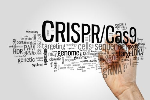 Broad, Berkeley Return to Argue CRISPR Invention at Patent Office