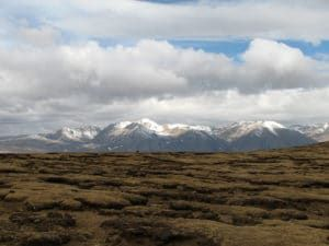 In New Tibetan Genome Assembly, Variants for Living at Altitude and the Imprint of Archaic DNA