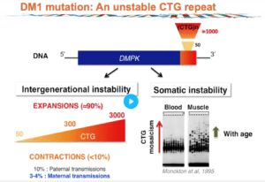 SMRT Sequencing Detects Clinically Significant Repeat Changes In Triplet Expansion Disorders