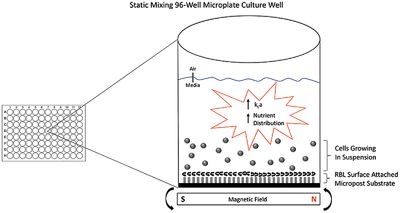 Mixing and oxygen transfer characteristics of a microplate bioreactor with surface‐attached microposts