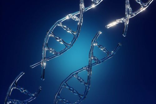 Encoded Nabs $104M, Illumina's Help, to Push Gene Therapy's Limits
